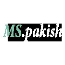 Pakish Modern Shop Logo