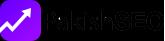 Pakish Seo Logo